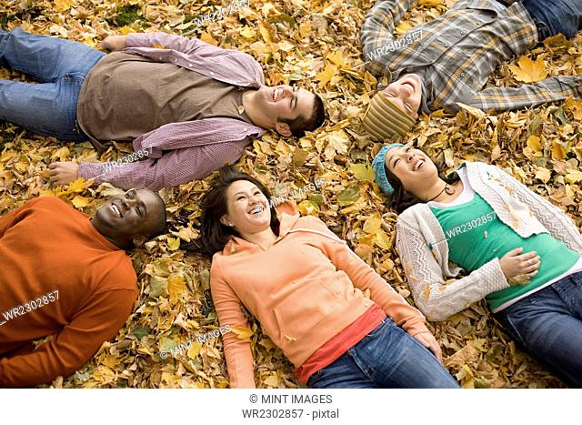 A group of men and women lying on their backs among the autumn leaves