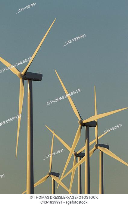 Windmills on a wind farm near Zahara de los Atunes  In the light of the late evening  Cádiz province, Andalucía, Spain