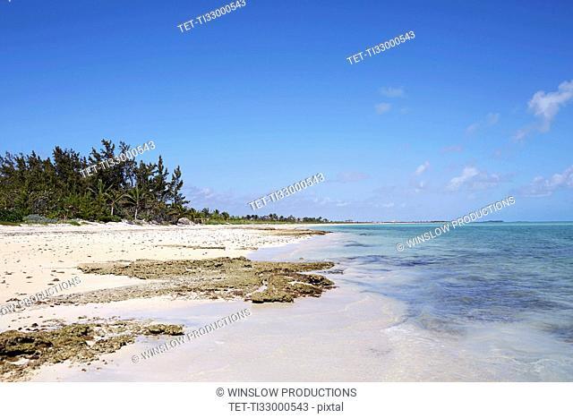 Beach on Bahamas on sunny day