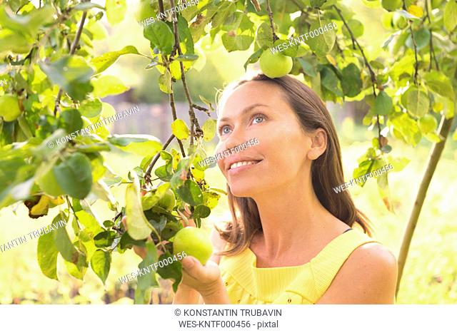 Smiling woman under an apple tree