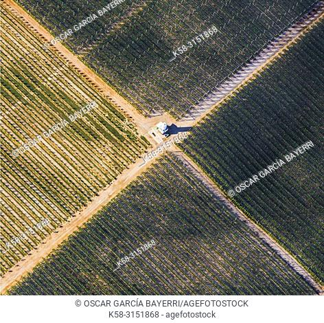 Farmlands. Caspe, Zaragoza province, Aragon, Spain