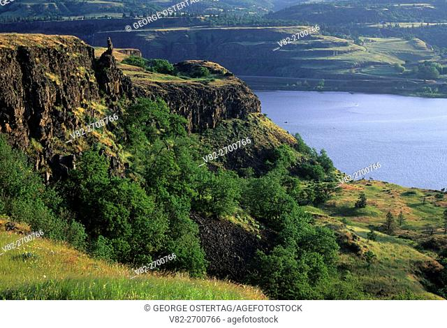 Columbia River view, Tom McCall Preserve, Columbia River Gorge National Scenic Area, Oregon