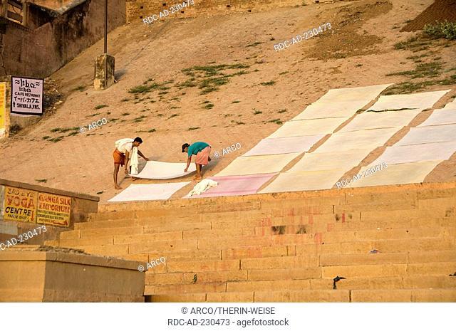 Indian putting the washing out to dry on the ghats, Varanasi, Benares, Uttar Pradesh, India