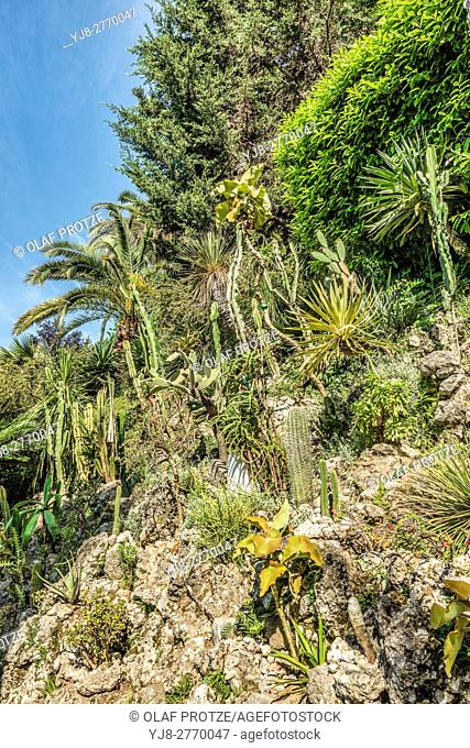 Rock Garden at the Botanical Garden of Villa Carlotta, Tremezzina, Lake Como, Lombardy, Italy