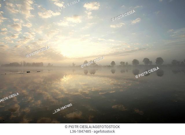 Sunrise on the Bug river  Podlasie region  Poland