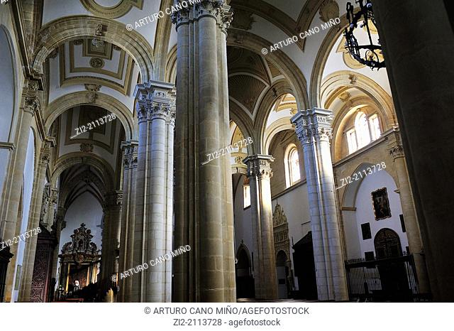 Cathedral of the Nativity of Our Lady, XIII-XVIth centuries, main nave, Baeza, Jaen province, Spain