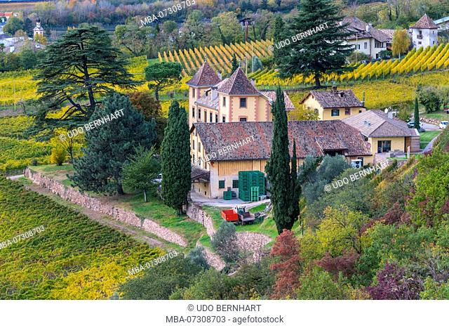 View on winery Kornell, Siebeneich, Adige Valley, Vinschgau, South Tyrol, Italy