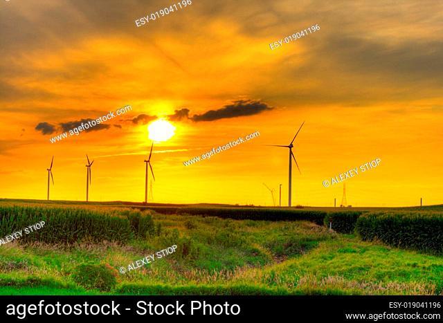 Windmill farm sunset