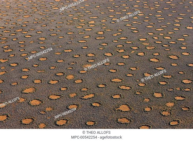Plain covered with fairy circles, NamibRand Nature Reserve, Namibia