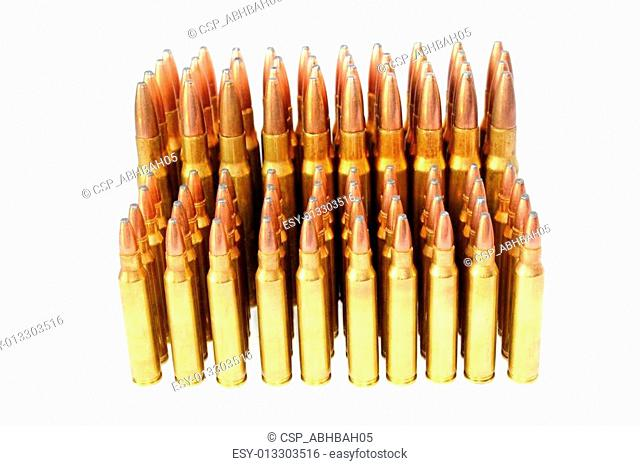 .223 and .306 Bullets
