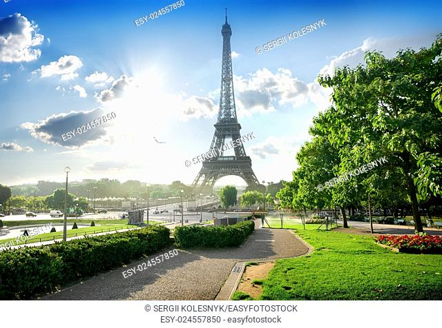 Eiffel tower near green park in Paris, France