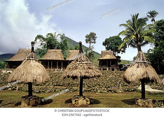 Bena village in the Ngada district near Bajawa, Flores island, Lesser Sunda Islands, Republic of Indonesia, Southeast Asia and Oceania