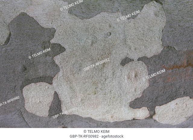 Texture, Stone, Cotia, São Paulo, Brazil
