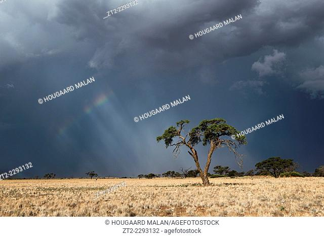 Landscape view of dramatic thunderstorm conditions over a dry desert landscape. Namib Rand, Namibia