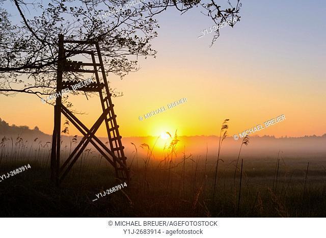 Hunting Blind at Sunrise, Hesse, Germany, Europe