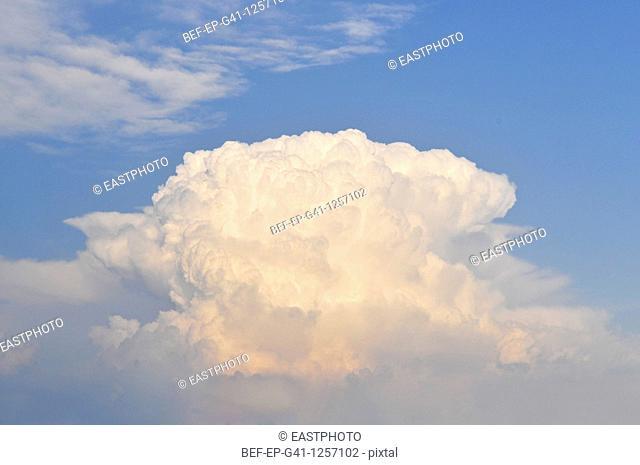 Oddly shaped cloud