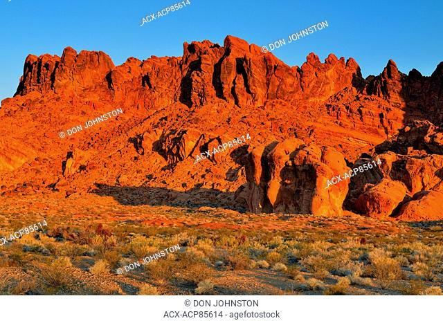 Rock formations and Mojave desert scrub community , Valley of Fire State Park, Nevada, USA