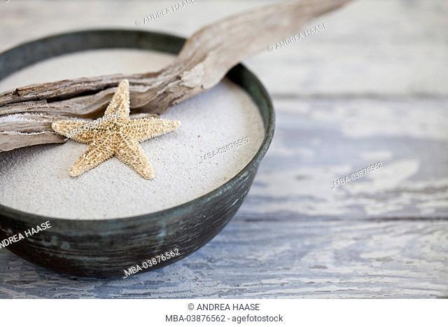 Still life, bowl, sand, driftwood, starfish