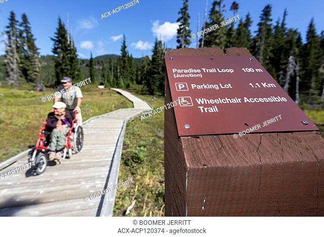 Wheel chair accessibility provides for disabled folks who also enjoy the experience of being outdoors. Paradise Meadows, Strathcona Park, The Comox Valley