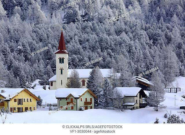 Church Chiesa Bianca in winter after a snowfall, Maloja, Engadin, Canton Grisons, Switzerland, Europe
