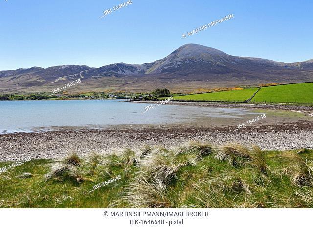 Croagh Patrick mountain, Carrowkeeran, County Mayo, Connacht province, Republic of Ireland, Europe