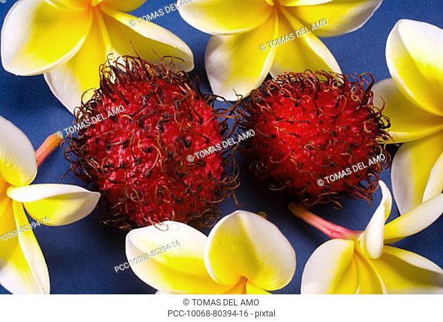 Studio shot of rambutan and flowers