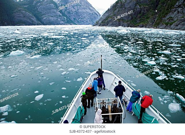 Bergy bits in the water near Le Conte Glacier, which is the southernmost tidewater glacier in the United States, near Petersburg, South East Alaska