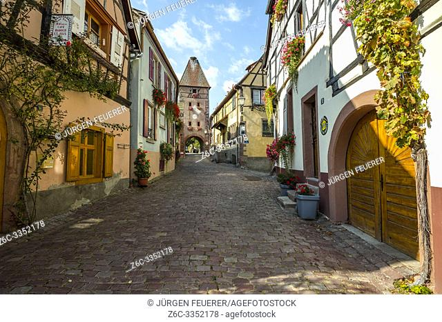 lane of the frame village Ammerschwihr, Alsace, France, old wine village with town gate and tower
