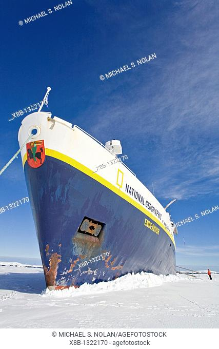The Lindblad expedition ship National Geographic Endeavour 'grounded' into first year pack ice in Port Foster within Deception Island near the Antarctic...