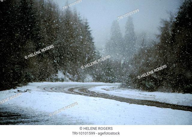 Snow Falling Scotland