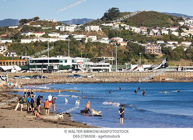 New Zealand, North Island, Wellington, Lyall Beach