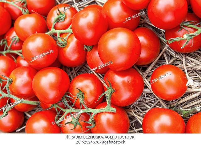 Tomatoes in farmers market