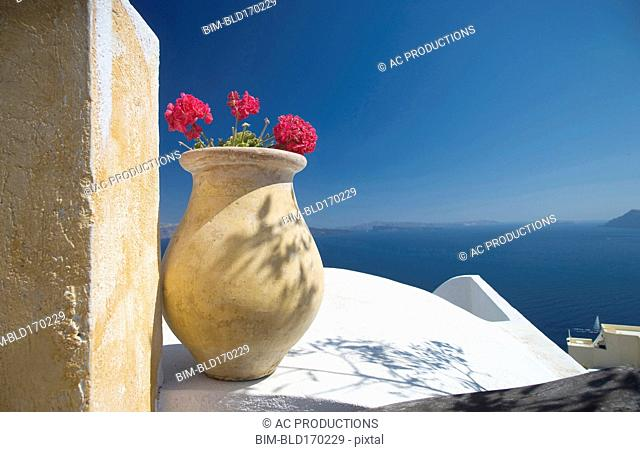 Flower pot on balcony overlooking seascape