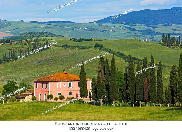 Farm with cypress trees, fields and farmhouses, Tuscany Landscape, Val d'Orcia, UNESCO world heritage site, Pienza, Siena province, Tuscany, Italy