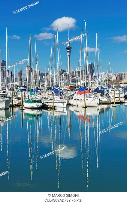 View of yachts at Westhaven Marina and sky tower, Auckland, North Island, New Zealand