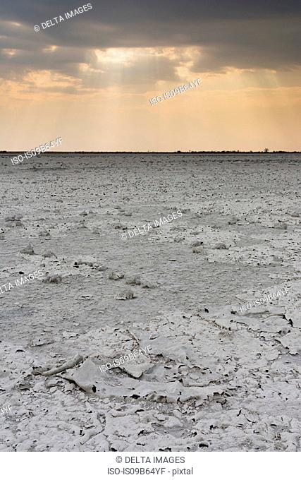 A storm approaching the salt pan, Nxai Pan, Botswana , Africa