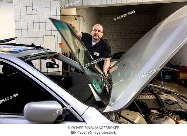 Changing, applying the windscreen of a car in a garage for car glass, Düsseldorf, North Rhine-Westphalia, Germany