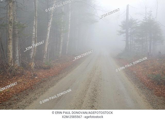 Long Pond Road (old North and South Road) in Benton, New Hampshire USA during a rainy and foggy autumn day