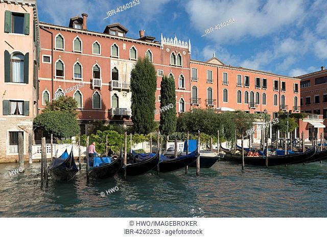 Palazzo Rava, Gothic Revival, 1906, Grand Canal, district San Polo, Venice, Veneto, Italy