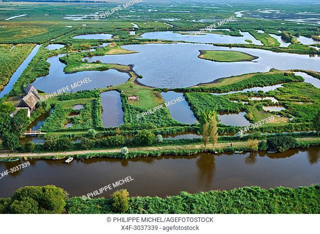 France, Loire-Atlantique, regional parc of Brière, Saint Joachim