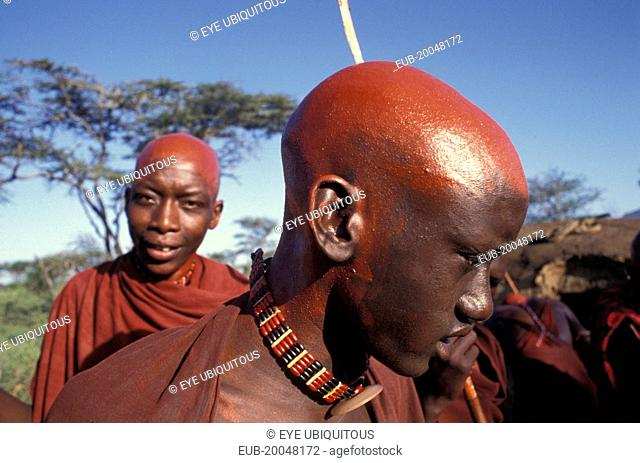 Maasai moran with their recently shaved heads covered with ochre which signifies their coming into manhood during an initiation ceremony of their age sets
