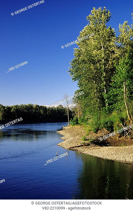 Willamette River, Willamette Mission State Park, Oregon