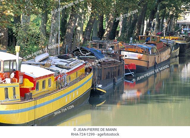 Boulevard de Monplaisir, Canal du Midi, UNESCO World Heritage Site, town of Toulouse, Haute-Garonne, Midi-Pyrenees, France, Europe