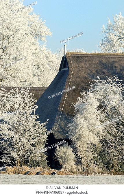 Landgoed De Klencke, Hoving hoeve, Oosterhesselen, Drenthe, The Netherlands, Holland, Europe