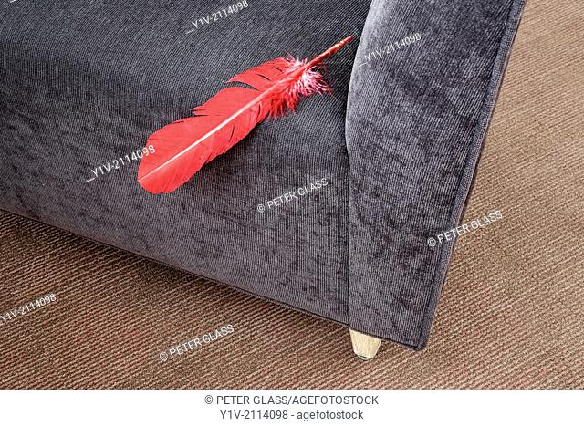 Red feather in the corner of a chair