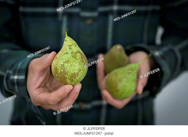 Man's hand holding pear, close-up