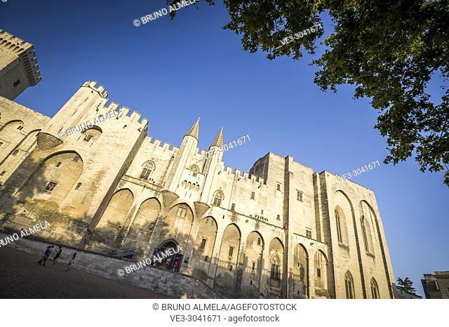 Papal palace of Avignon (department of Vaucluse, region of Provence-Alpes-Côte d'Azur, France)