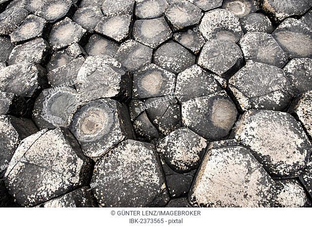 Basaltic rocks, hexagons seen from above, Giant's Causeway, Coleraine, Northern Ireland, United Kingdom, Europe
