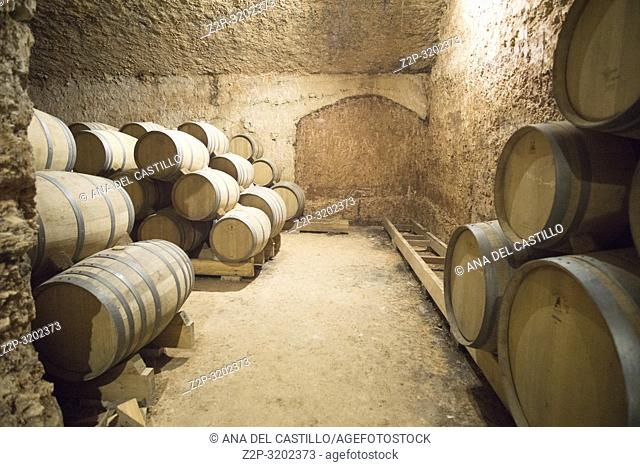 Autumn Vineyards and cellars in Fontanars dels Alforins and Moixent Valencia province, Spain