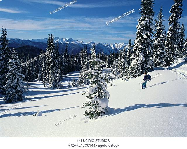 Snow Shoeing, Manning Provicial Park, BC